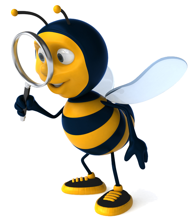 SEO Chelmsford , We get the best results